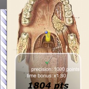 atlas-app-android-iphone-speed-anatomy-04
