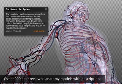Aplicación médica Chrome: atlas  BioDigital Human